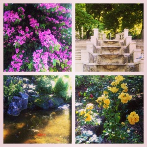 Rome's Hidden Secret - The Botanical Gardens