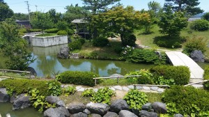 The gardens at the Tea Museum