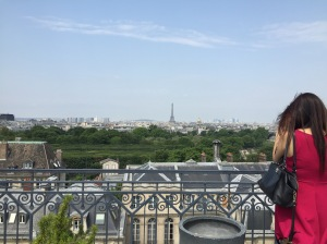 From the roof of the Foyer, where many Temple students are staying, countless landmarks of Paris are visible.