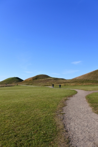 Burial mounds at Gamla Uppsala. Each mound is one grave, dating to the 5th and 6th centuries.