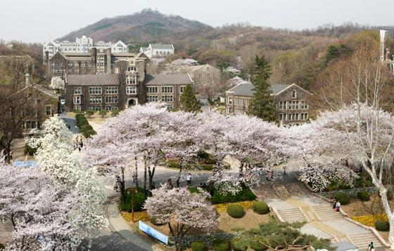 du-hoc-han-quoc-cung-truong-cua-luhan-exo-yonsei-university_s810