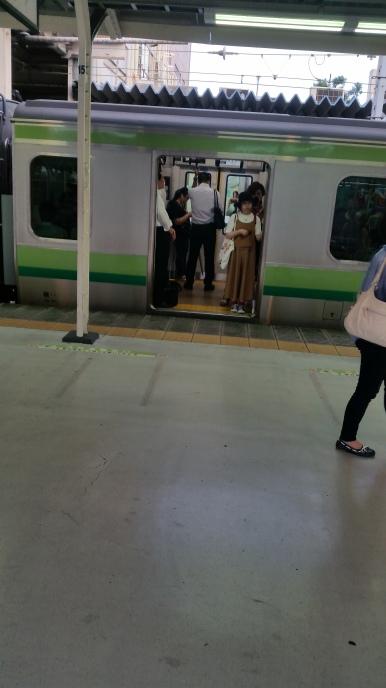 Train to Yokohama
