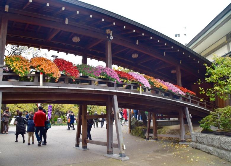 f161406_tokyo_flower-bridge_tamlynkurata