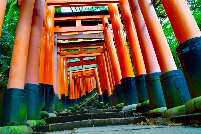 f161607_tokyo_fushimi-inari-shrine_tamlynkurata