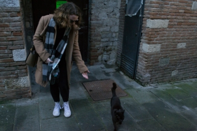 A stray cat in Todi decided we were friendly enough to follow around