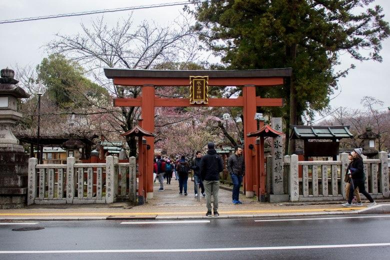 SP18106_Nara_Himuro Shrine_KaylaAmador