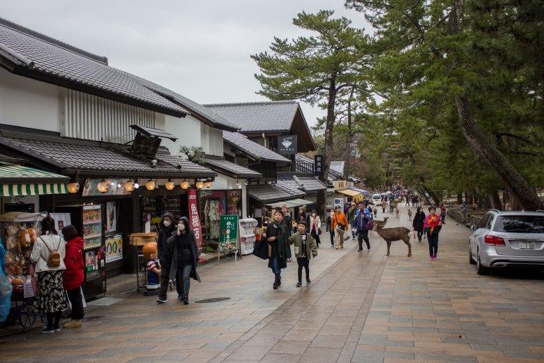 SP18107_Nara_Path to Todai-ji_KaylaAmador