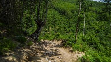 near Agerola