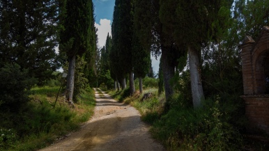 fuori di San Gimignano, Toscana
