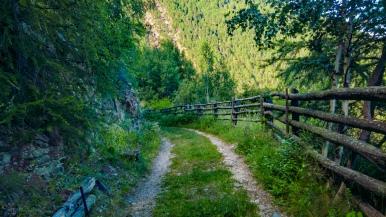 near Laces, Alto Adige