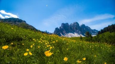 near Rifugio Zannes, Alto Adige